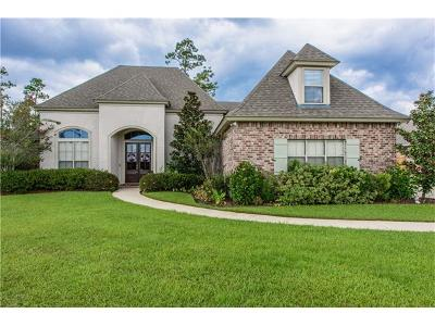 Slidell Single Family Home For Sale: 527 Clayton Court