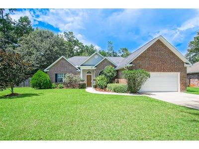 Single Family Home For Sale: 240 Autumn Wind Lane