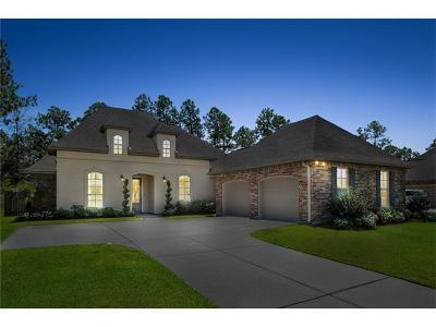 Slidell Single Family Home For Sale: 579 Tanglewood Crossing Drive