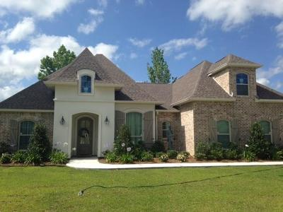 Single Family Home For Sale: 720 Wood Duck Lane