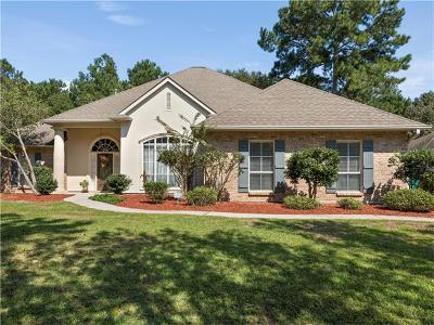 Slidell Single Family Home For Sale: 221 Leeds Drive