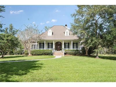 Single Family Home For Sale: 429 Scotchpine Drive