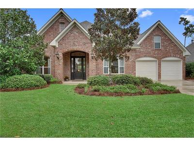 Single Family Home For Sale: 467 Red Maple Drive