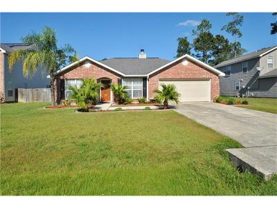 Slidell Single Family Home For Sale: 320 Tracey Lane