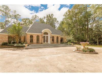 Slidell Single Family Home For Sale: 408 Christian Lane