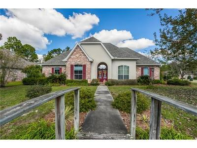 Single Family Home For Sale: 3001 Mountain Court