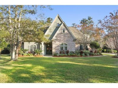 Slidell Single Family Home For Sale: 1007 Parkpoint Drive