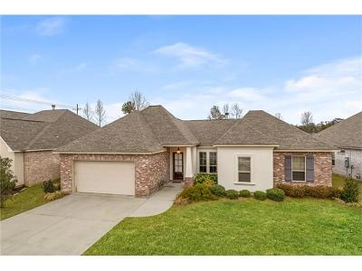 Single Family Home For Sale: 956 Agnes Street