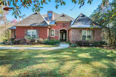 Slidell Single Family Home For Sale: 1059 Parkpoint Drive