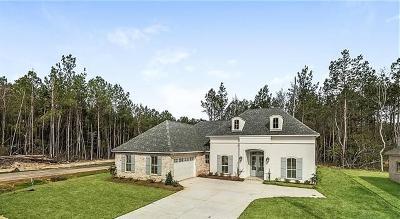 Mandeville Single Family Home For Sale: 1325 Destin Street