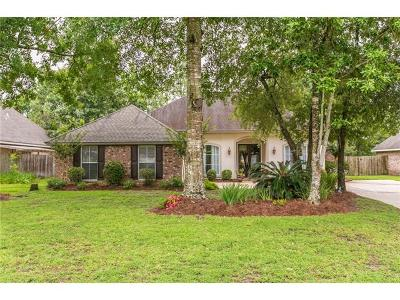 Slidell Single Family Home For Sale: 667 Whitney Drive
