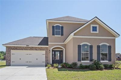 Single Family Home For Sale: 9551 Silver Bell Place