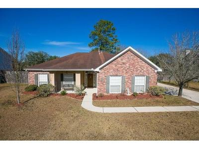 Slidell Single Family Home For Sale: 230 Meadows Boulevard
