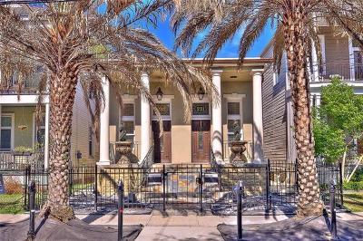 New Orleans Multi Family Home For Sale: 231 S Pierce Street