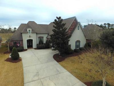 Slidell Single Family Home For Sale: 117 Cypress Lakes Drive