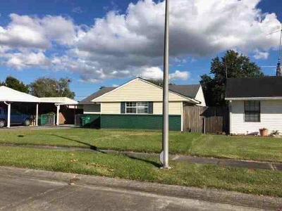 Single Family Home For Sale: 328 Elsa Drive