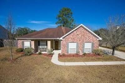Slidell Single Family Home For Sale: 230 Meadow S Boulevard
