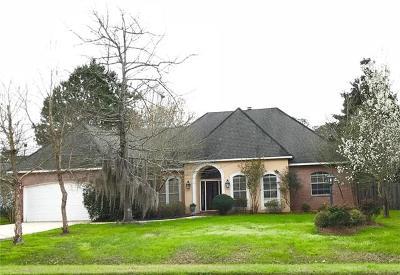 Single Family Home For Sale: 1380 Ridge Way Drive
