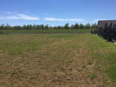 Mereaux, Meraux Residential Lots & Land For Sale: E St. Bernard Highway