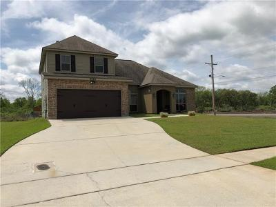 Westwego Single Family Home For Sale: 9524 Sweet Bay Lane