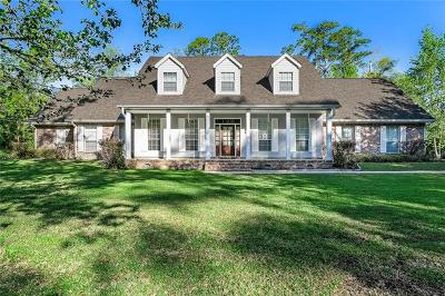Slidell Single Family Home For Sale: 103 Perret Drive