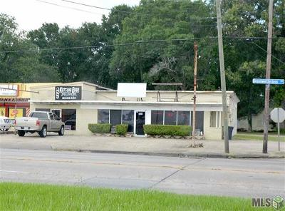Commercial For Sale: 7875 Greenwell Springs Road