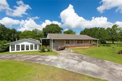 Slidell Single Family Home For Sale: 42186 Hwy 190 E. Highway