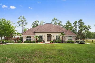 Slidell Single Family Home For Sale: 2021 Old River Road