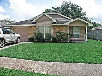 Single Family Home For Sale: 625 Dandelion Drive