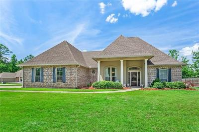 Single Family Home For Sale: 530 Autumn Wind Lane