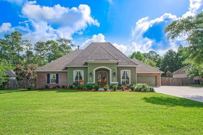 Slidell Single Family Home For Sale: 323 Leeds Drive