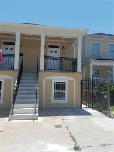 New Orleans Multi Family Home For Sale: 2226/2228 Magnolia Street