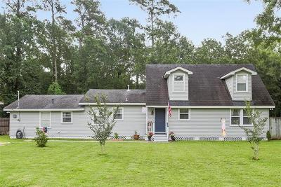 Single Family Home For Sale: 19132 Hector Street