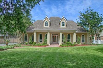 Slidell Single Family Home For Sale: 134 White Stork Drive