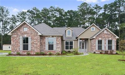 Single Family Home For Sale: 9582 Catalpa Loop