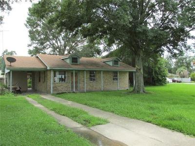 Single Family Home For Sale: 212 Christiana Drive