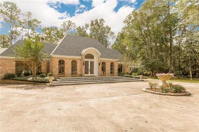 Slidell Single Family Home For Sale: 408 Christian Lane