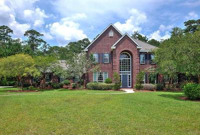 Slidell Single Family Home For Sale: 1119 Crystal Court