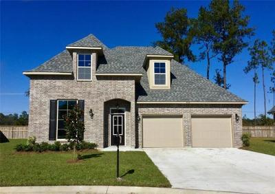 Slidell Single Family Home For Sale: 506 Eagles Nest Circle