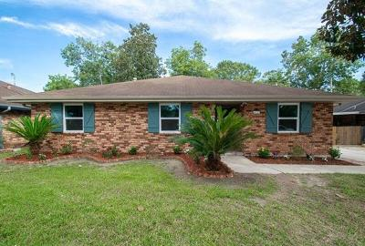 Single Family Home For Sale: 122 Ormond Village Drive
