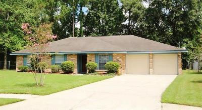 Slidell Single Family Home For Sale: 1104 Michigan Avenue