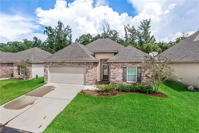 Single Family Home For Sale: 2624 Sea Shore Drive