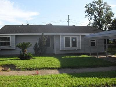 Single Family Home For Sale: 113 Bishop Drive