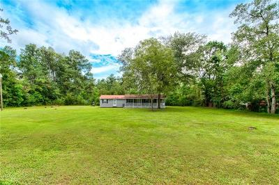 Single Family Home For Sale: 22536 Hoffman Road