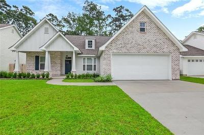 Mandeville Single Family Home For Sale: 169 Sandra Lee Drive