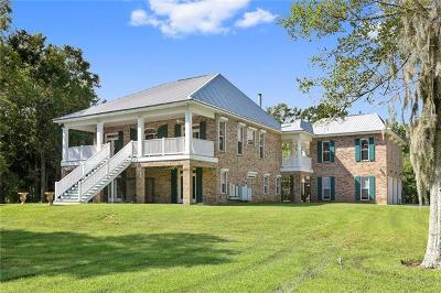 Single Family Home For Sale: 11751 River Road