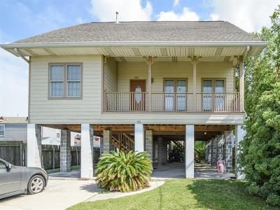 New Orleans Single Family Home For Sale: 2341 Vienna Street