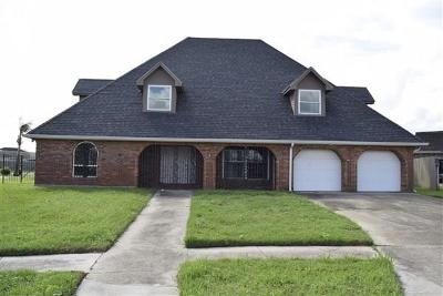Single Family Home For Sale: 6946 Thor Court