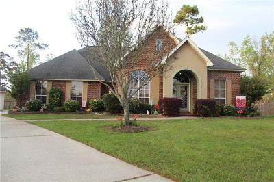 Slidell Single Family Home For Sale: 315 Annette Drive