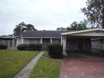 Single Family Home For Sale: 125 Southern Court